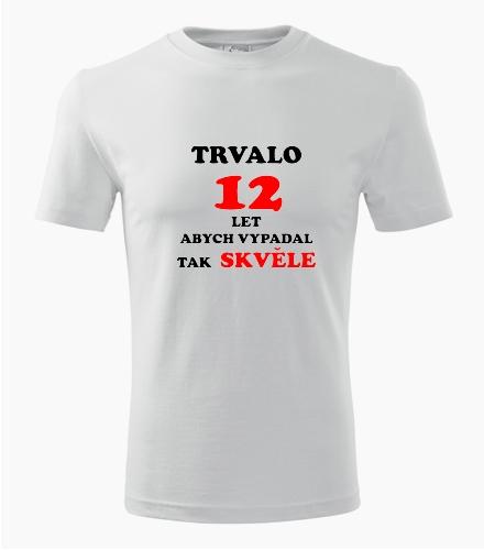 Narozeninové tričko trvalo 12 let - Dárek pro kluka k 12